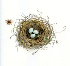 Craftsy.com - draw and watercolor birds nest