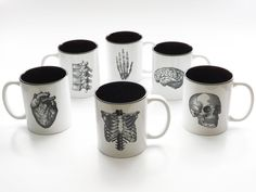 Anatomy Theme Coffee MUGS Set of Six medical home decor goth kitchen gift
