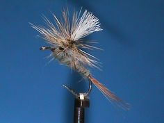 Beginner Fly Tying a Simple Parachute Adams with Jim Misiura
