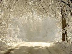 Snowy forest road desktop PC and Mac wallpaper Winter Szenen, I Love Winter, Winter Is Here, Winter Time, Winter Christmas, Winter Road, Winter Light, Christmas Scenery, Snow Light
