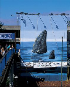 """WW 60 """"Spyhopping Gray Whale""""  Pier 39-Parking Structure Entrance  Beach & Embarcadero Streets  San Francisco, California  52 Feet Long x 58 Feet High  Dedicated September 5th, 1994  By Dennis Bouey"""