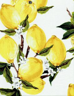 "Fabric ""Freshly Squeezed"" Retro Lemon Fruit Print Yellow Lemons - By the Yard"