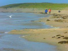 'Spazieren am Strand' von Peter Norden bei artflakes.com als Poster oder Kunstdruck $22.17