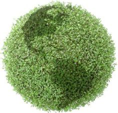 Ideas For Living Room With Green Carpet Vidalondon Cleaning Berber