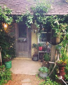 2015 5・31 近所のおばちゃんから 竹の洗濯籠をいただきました。 七福神の後ろに置いてある籠です。 昔のものって味があるから大好き♡ あちこちに移動させて飾って、ニヤニヤしながら眺めてます! #ナチュラルガーデン #マイガーデン #小屋 #庭の小屋 #錆び錆びミルク缶 #多肉ちゃん #多肉植物 #七福神 #プミラ #竹の洗濯籠