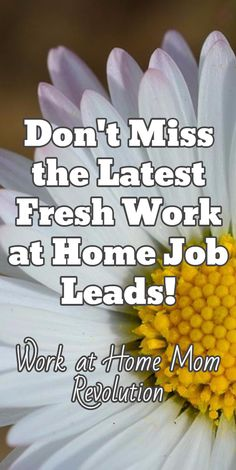 Don't Miss the Latest Fresh Work at Home Job Leads! / Work at Home Mom Revolution