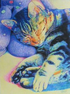 "Christine Bowron: ""Blue Tabby Cat"", coloured #pencil #drawing, 2013."