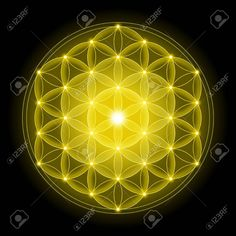 Golden Flower Of Life With On Black Background, A Spiritual Symbol ...