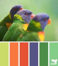 צבעים בוהקים מהטבע