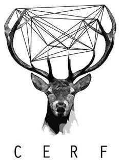 48 Meilleures Images Du Tableau Cerf Deer Drawings Et Artworks