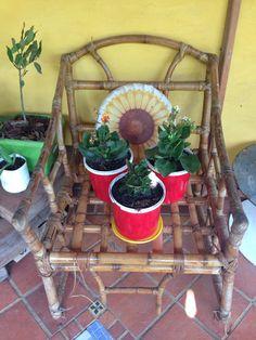 Cadeiras no jardim, onde as flores sentam é descansam. Essas estão em troca de flores