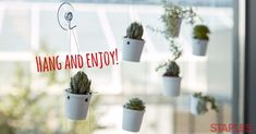 Turn Used Coffee Pods into Planters with this Hack. | Staples Business Advantage Resource Center #coffeepods