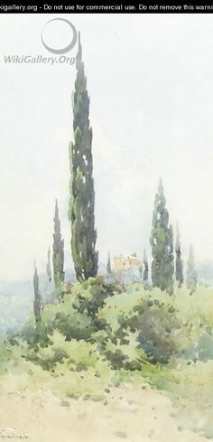 A villa amongst cypress trees, Corfu - Angelos Giallina Watercolor Landscape, Watercolor Paintings, Watercolour, Corfu Island, Cypress Trees, Urban Sketchers, Vincent Van Gogh, Geology, Villa