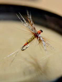 Flyfishing . March Brown . Photo theanglerfly .