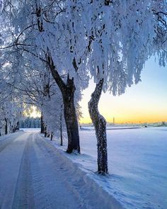 Winter Scenery, Time Of The Year, Winter Wonderland, Nature Photography, Snow, Seasons, Places, Outdoor, Twitter
