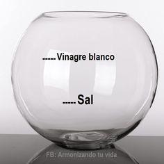 Cura de Sal con Vinagre- Siria Grandet
