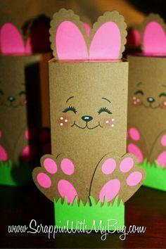 Coniglietto con rotoli di carta igienica