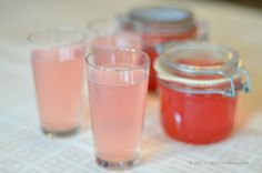 Nordic Nibbler: Rhubarb Cordial and a Rhubarb Gin & Tonic – Recipe