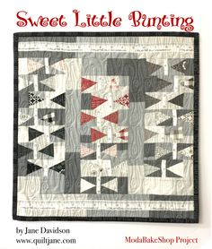 Hi, I'm Jane Davidson from Want it Need it Quilt aka Quiltjane. Today I am sharing a mini made with the new Sweetwater Volume II collection, a mix of greys, blacks, reds and ivory, reminiscent of one