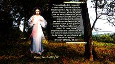 Divina Misericordia : paz divina a la hora de la muerte