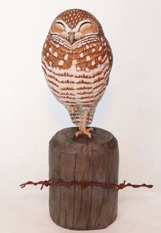 Sleeping Burrowing Owl - Artwork by Tim McEachern. Owl Artwork, Burrowing Owl, Owl Pictures, Pyrography, Wood Art, Carving, Art 3d, Ceramics, Birds