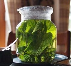 7 must have herbs for the summer  Lemon Balm-heat exhaustion, lavender-sunburn spray,plantain-cuts burns stings and bites;meadowsweet tincture-topical pain relief;St john's Wort- heals soft tissue and nerve damage,fibromialgia, warts, and cold soars; Yarrow and Calendula oil for vericose veins