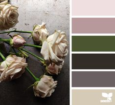 Flora Tones - http://design-seeds.com/home/entry/flora-tones66