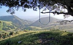 Picture of the Day: The Serenity Swing  Photograph by Mebi on Reddit     Located at the top of hill on a big oak tree is the Serenity Swing in Poly Canyon. For those interested, it's a short hike just outside of San Luis Obispo in California.