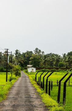 Green Fields by Nishith Jayaram on 500px