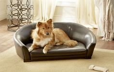 If you're looking for attractive dog furniture, you're going to love the Enchanted Home Winston Sofa Pet Bed . This dapper pet bed has a. Couch Pet Bed, Diy Dog Bed, Dog Beds For Small Dogs, Cool Dog Beds, Enchanted Home, Pets, Artemis, Hallway Closet, Brown