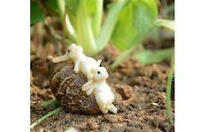 Miniature Dollhouse FAIRY GARDEN ~ Rabbits Playing On Nut ~ NEW