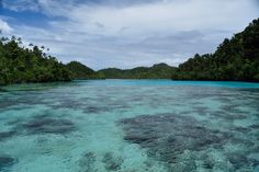 Excursion in Raja Ampat during sunset, on a remote island in the middle of nowhere.