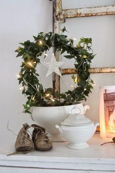 Julros | Deco noel, Rose de noel, Fleur hiver