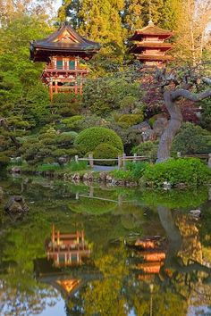 Japanese Tea Garden San Fransisco, CA - Such a neat and unique place, loved getting to see this.