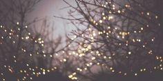 Imagem através do We Heart It #alternative #beauty #christmas #cover #december #grunge #hipster #illustration #indie #lights #nostalgia #photography #purple #trees #vintage #violet #winter