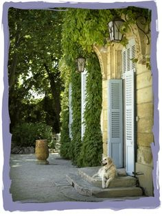 have some decorum: Pardon My French, But This B*tch Wants to Move To Provence