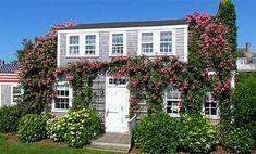Nantucket Cottage, Nantucket Island, Cottages By The Sea, Cottage Exterior, Rose Cottage, Cottage Living, Cafe Design, Ideal Home, Vacation