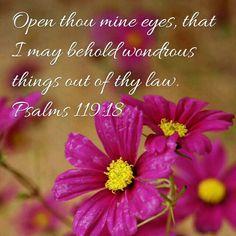 Psalms 119:18 KJV
