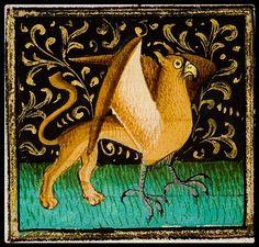 Griffon, 1446