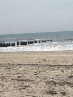 Howard Beach, NY -old pilings of Hotel Howard Howard Beach, Places In New York, Back In The Day, New York City, Brooklyn, Nyc, Memories, History, Water