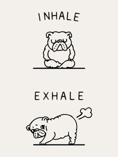 ohjappy: inhale ...exhaleee! it's FRIDAY YEY