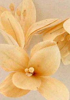 """Sola Wood flower """"Lily"""""""