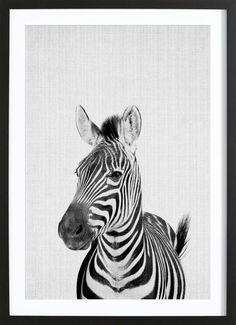 Juniqe Premium Poster Print 49 von Lila x Lola Tier Wallpaper, Animal Wallpaper, Safari Nursery, Nursery Wall Art, White Nursery, Baby Animals, Cute Animals, Animals Black And White, Black White
