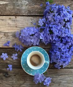 4 Portentous Tips: Coffee Cake For A Crowd coffee cozy home.Coffee Pictures Post… 4 Portentous Tips: Coffee Cake For A Crowd coffee cozy home. Coffee Meme, Coffee Barista, Coffee Cozy, Coffee Latte, Coffee Signs, Starbucks Coffee, Hot Coffee, Morning Coffee, Coffee Creamer