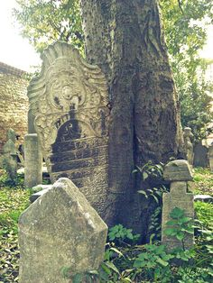 old, Ottoman cemetery, Istanbul by lavalsed'amelie, via Flickr #ottoman #cemetery #Istanbul