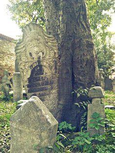 Old Ottoman Cemetery, Istanbul Turkey