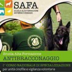 Iniziativa congiunta Arma dei Carabinieri - Legambiente - Enci, con il patrocinio di Federparchi