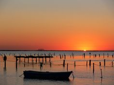 Delta Del Ebro, Sandy Beaches, Costa, Places To Visit, Sunset, Country, World, Gallery, Water