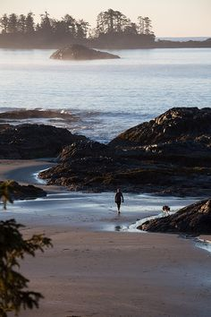 The West Coast of Vancouver Island (Canada) is remote, yet accessible, and of course unspoiled. University Of British Columbia, Vancouver British Columbia, West Coast Trail, West Coast Road Trip, Vancouver Island, New Travel, Canada Travel, Beach Travel, Paisajes