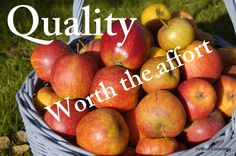 Quality - it really is worth it ... for lots of reasons.